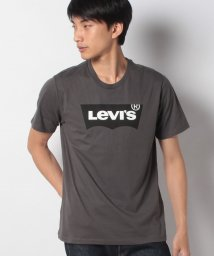 LEVI'S MEN/HOUSEMARK GRAPHIC TEE SSNL HM FORGE IRON/503291417