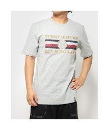 TOMMY HILFIGER/トミーヒルフィガー TOMMY HILFIGER アイコンストライプリラックスフィットTシャツ (グレー)/503314773