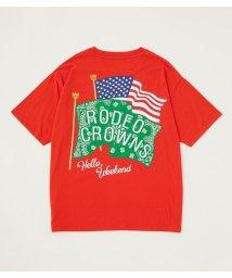 RODEO CROWNS WIDE BOWL/メンズバンダナフラッグTシャツ/503319620