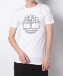 Timberland/【Men】SS Large Silcone Tree Tee Whit,FQ/503249273