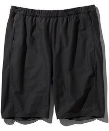 The North Face/T-LOUNGE_SHORT/503308572