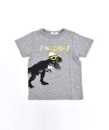 SLAP SLIP/恐竜 プリント Tシャツ 天竺/503319527