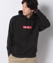 LEVI'S MEN/RELAXED GRAPHIC HOODIE BOXTAB PO MINERAL/503291604
