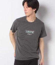 LEVI'S MEN/BOXTAB GRAPHIC TEE SSNL BOXTAB GARMENT D/503291551