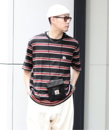 JOINT WORKS/【STUSSY / ステューシー】 HARBOUR STRIPE CREW/503354936