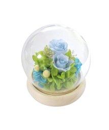 BACKYARD/スフィア ガラスドームアレンジメント/503354441