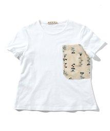MARNI/MARNI(マルニ) Kids & Junior 半袖Tシャツ/カットソー/503356179