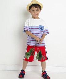 SLAP SLIP/天竺マルチボーダー切り替えTシャツ/503091868