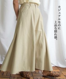 ARGO TOKYO/Cotton rayon side switching skirt 222044/503371995