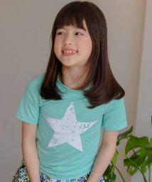 子供服Bee/Tシャツ風水着/503372022