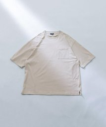 ITEMS URBANRESEARCH/UR TECHクルーネック半袖Tシャツ/503374289