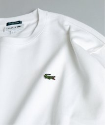 JOURNAL STANDARD/《予約】【LACOSTE / ラコステ】別注ピケロングスリーブ/503374718