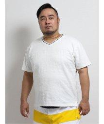 GRAND-BACK/【大きいサイズ】グランバック/GRAND-BACK ナノファイン/NANOFINE ふくれジャガードVネック半袖Tシャツ/503382438