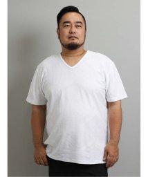 GRAND-BACK/【大きいサイズ】レノマオム/renoma HOMME 吸汗速乾 幾何学ジャガードVネック半袖Tシャツ/503382453