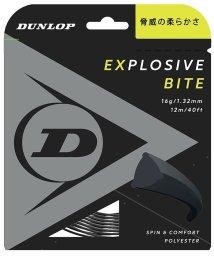 DUNLOP/ダンロップ/EXBITE ST DST11011/503386601