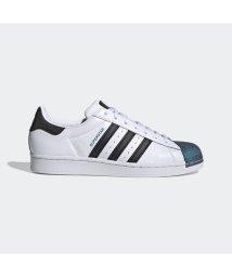 adidas/アディダス adidas スーパースター / Superstar (ホワイト)/503373112