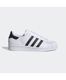 adidas/アディダス adidas スーパースター / Superstar (ホワイト)/503373308