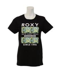 ROXY/ロキシー/レディス/WHITE SANDY BEACH TEE/503388135
