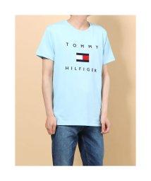 TOMMY HILFIGER/トミーヒルフィガー TOMMY HILFIGER フラッグロゴ プリント Tシャツ (ブルー)/503396559