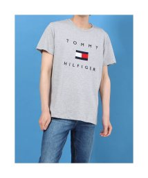 TOMMY HILFIGER/トミーヒルフィガー TOMMY HILFIGER フラッグロゴ プリント Tシャツ (グレー)/503396560