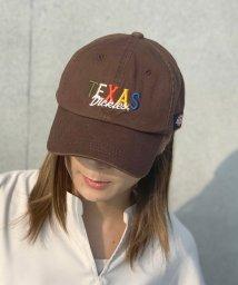 Dickies/TEXAS LOW CAP/503392987
