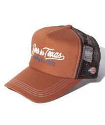 Dickies/CHAIN EMB MESH CAP/503393001
