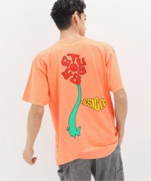 JOINT WORKS/【STUSSY / ステューシー】SPROUT PIG DYED TEE/503422743