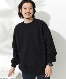 URBAN RESEARCH Sonny Label/【予約】【別注】STAR&STRIPE×Sonny Label CREW FRENCH TERRY/503423466