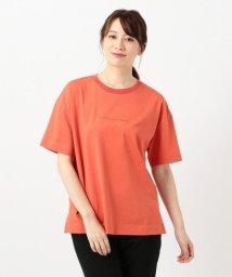 iCB/Organic Cotton ロゴカットソー/503429162