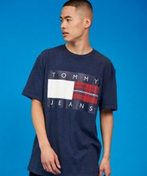 TOMMY JEANS/チェックロゴTシャツ/503433700