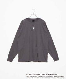 WEGO/∴WEGO/KANGOL別注ビッグシルエット刺繍ロンT/502371768