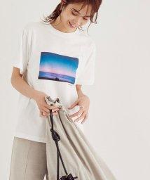 ROPE'/【WEB限定】フォトプリント半袖Tシャツ/503532326