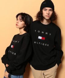 TOMMY HILFIGER/ロゴスウェット/503517371