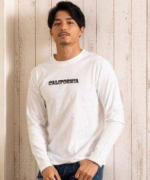 CavariA/CavariA【キャバリア】カリフォルニアグラフィックプリントクルーネック長袖Tシャツ/503556024