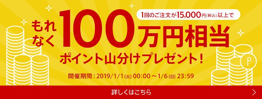 100万円相当ポイント山分けプレゼント!