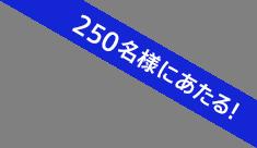 250名様にあたる!
