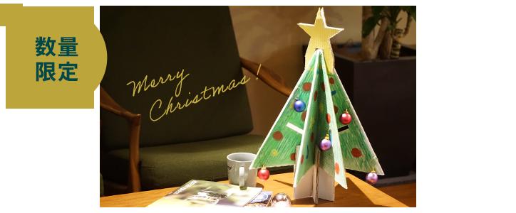 数量限定!クリスマスツリーボックス