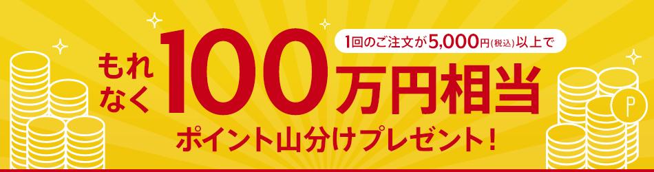 1回のご注文が5,000円(税込)以上でもれなく!100万円相当ポイント山分けプレゼント!